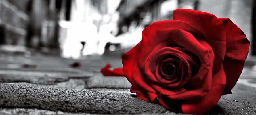 Cosa dovresti fare quando finisce un amore